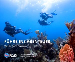 Copy of DE Divemaster web banner 300 x 250 Divemaster